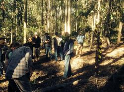 regrowth workshop photo (1)