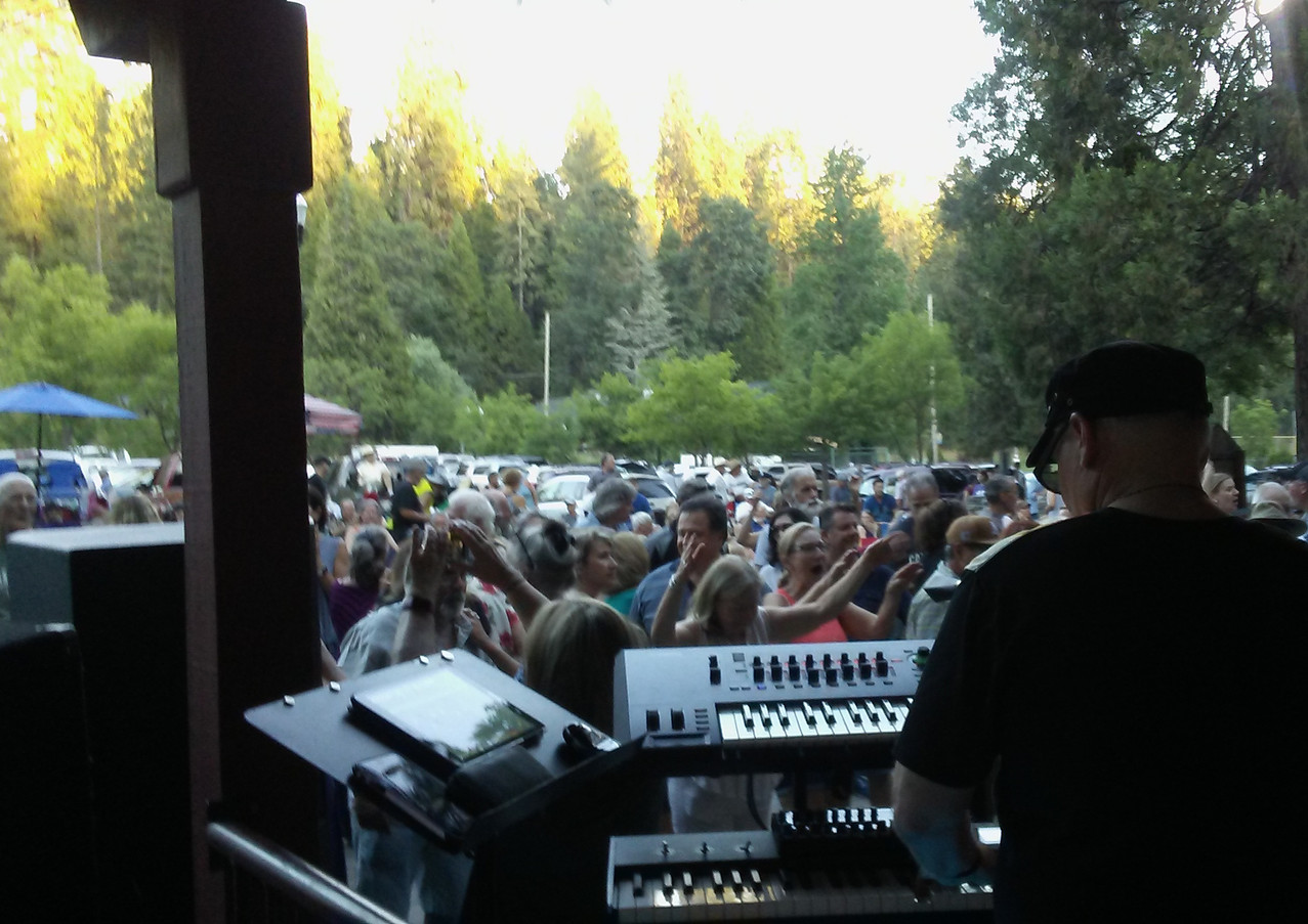 Concert in the Pines Series