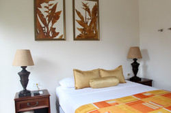 Room House Eco Arenal Hotel La Fortuna V