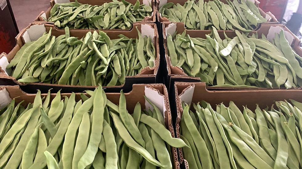 Haricots verts plats (les 500 gr)