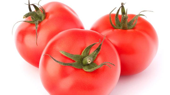 Tomate Daniela (cal M)