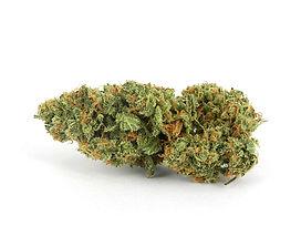 xj13-cannabis.jpg