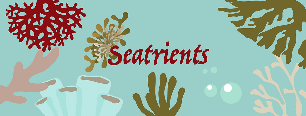 SEATRIENTS COVER IMAGE.png
