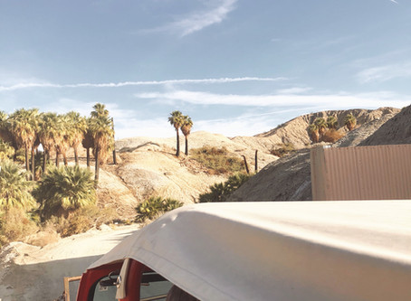 The Busy Body's Guide to Palm Springs