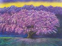 桜 サクラ~ステージ~.JPG