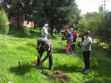 Autoridades de Papalotla inician saneamiento del río Huehuexotla