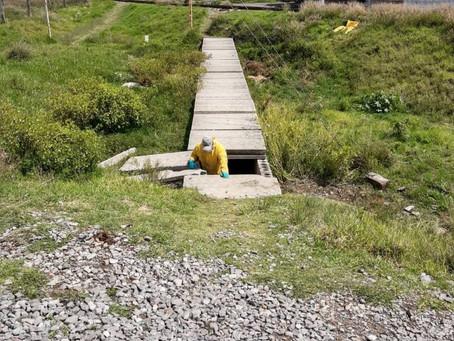 Gobierno de Papalotla corrige contaminación en río Huehuexotla