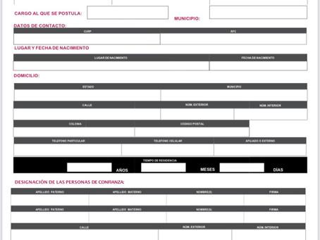 Lanza Morena convocatoria para definir cantidaturas a diputados locales y alcaldías. Contempla encue
