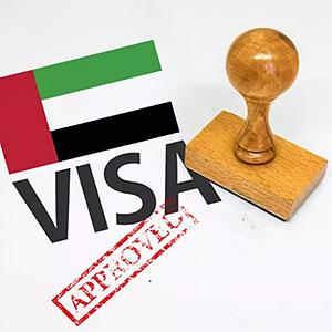 Visa assistance.PNG
