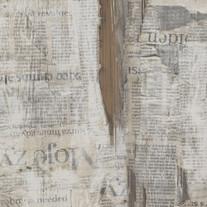 T-151_Newspaper