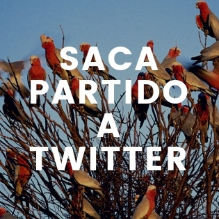 Saca partido a Twitter