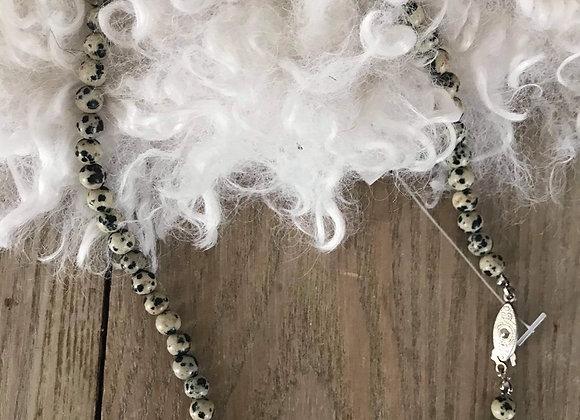 Perle dalmatien