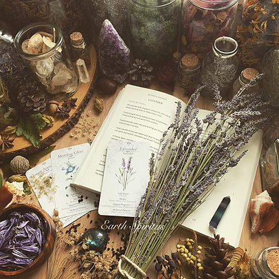 botanical witchery cards and book.jpg