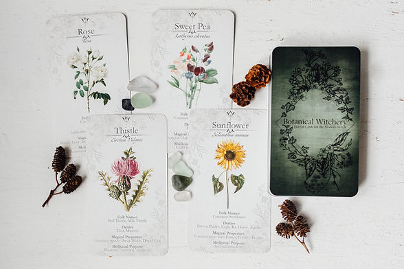 Botanical Witchery Herbal Cards