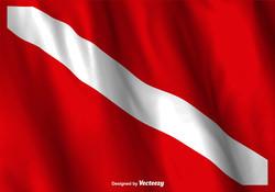 vector-dive-flag-waving