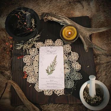 Botanical Witchery Herbal Magic Oracle c