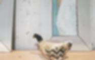 スクリーンショット 2019-05-16 17.47.07_edited.png