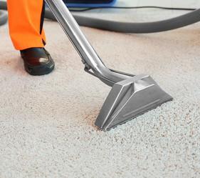 EcoGen Carpet Cleaner
