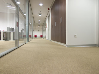 EcoGen Carpet Shampoo