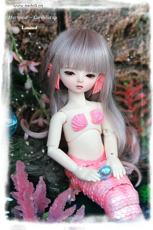 Cordelia SP