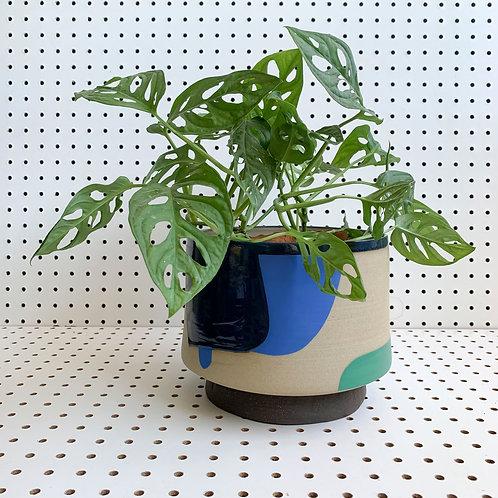 Blue & Tan Planter