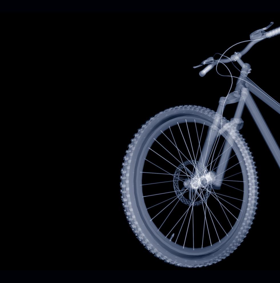 mountain-bike-2447170.jpg