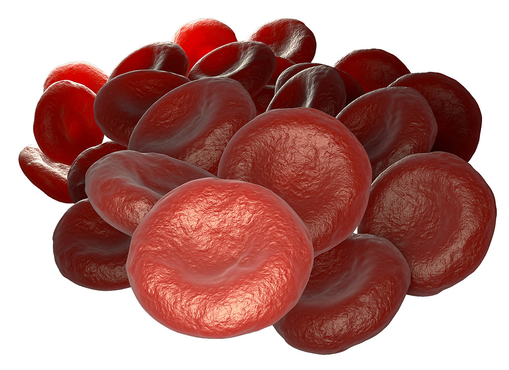 Nimbus Performance Red Blood Cell Aggregation