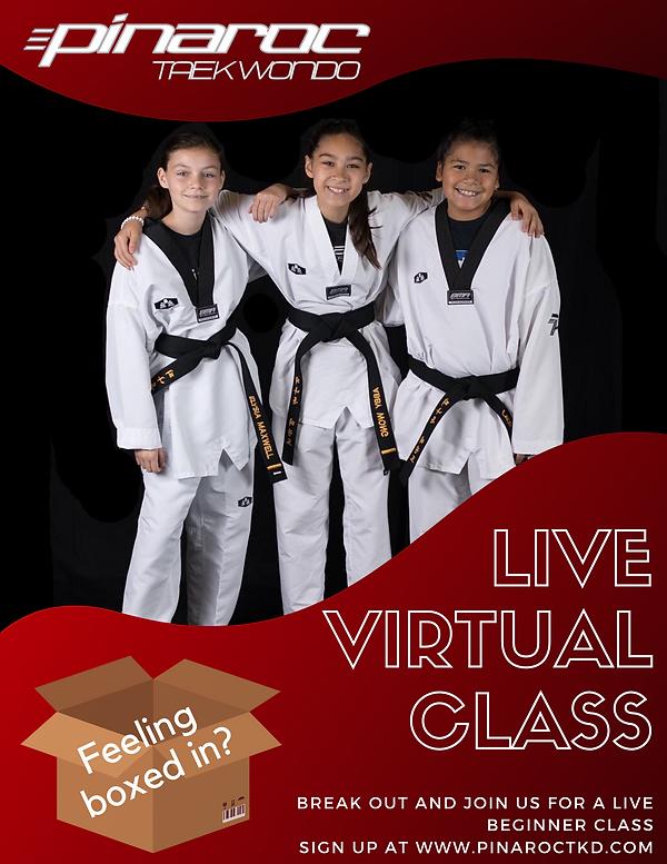 live virtual class.png