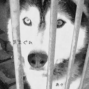 気まぐれ_ジャケ.jpg