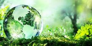 Green Globe.jpeg