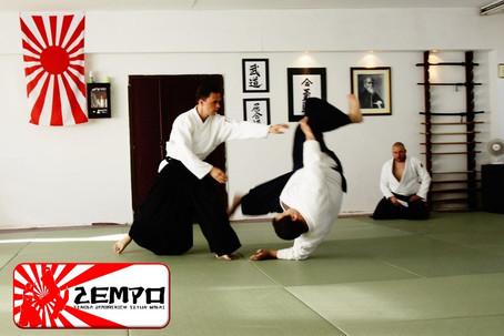 Aikido w Gdańsku Szkoła ZEMPO (3).jpg