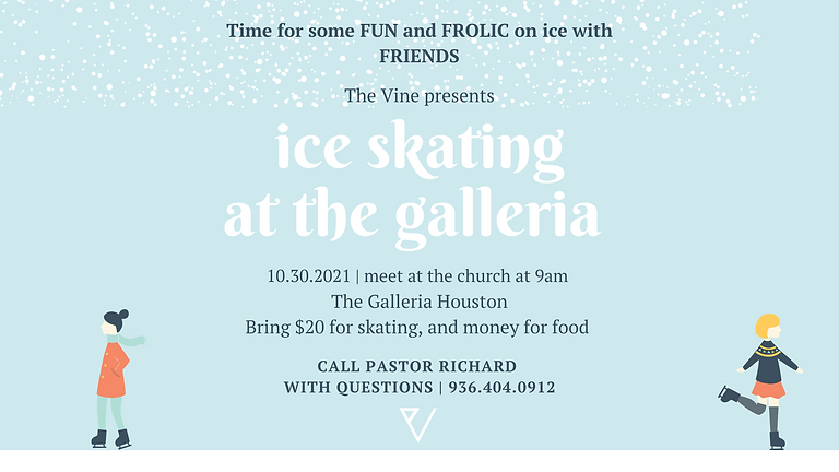 The Vine: Ice Skating at the Galleria.