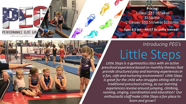 Little Steps Flyer.jpg