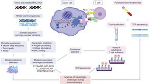 新生抗原是什麼?