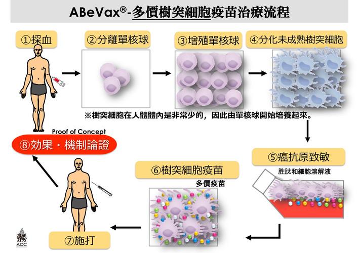 多價樹突細胞治療流程