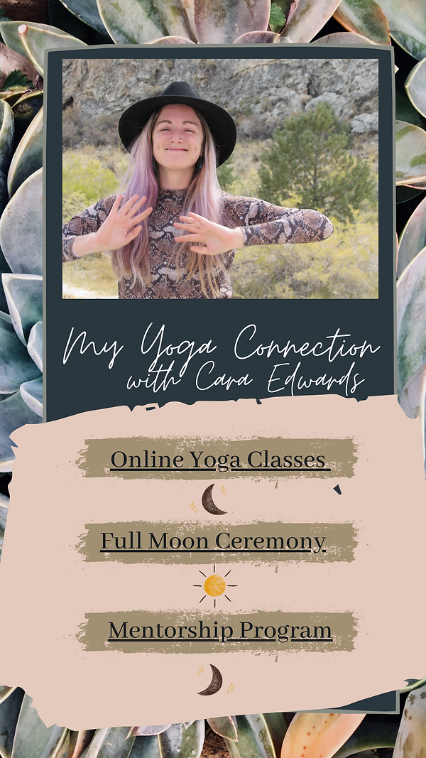 My Yoga Connection.png