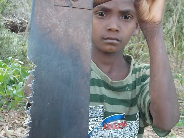 Young Woodcutter