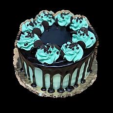 Chocolate Mint Drip Cake