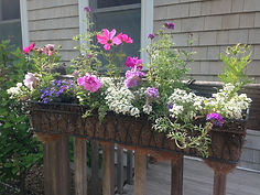 DDALEY - front porch window boxes.jpg
