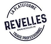 Revelles-logo-bleu_Plan-HD-1.jpeg