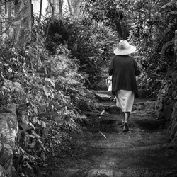 Chemin à la Cayenne