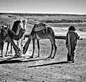 Maroc-47.jpg