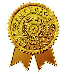 Custom-Gold-Embossed-Foil-Blank-Certific