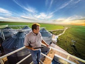 Tecnologia fornece informações climáticas precisas para a irrigação