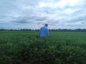 AgroQuantum inicia atividades em Mato Grosso do Sul