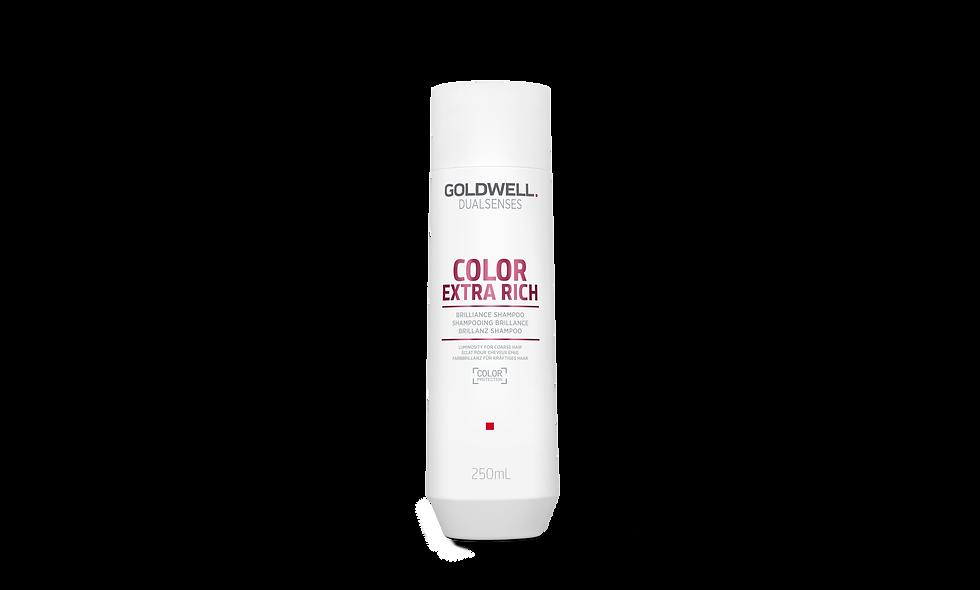 Goldwell Dualsenses - Color Extra Rich Brilliance Shampoo