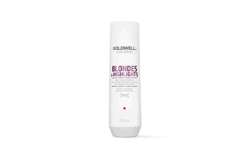 Goldwell Dualsenses Blondes & Highlights Anti Yellow Shampoo