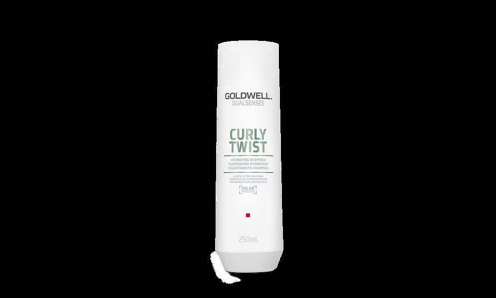 Goldwell Dualsenses Curly Twist Hydrating Shampoo