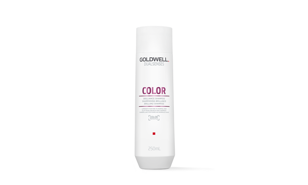 Goldwell Dualsenses - Color Brilliance Shampoo