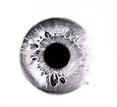 Eye2.png